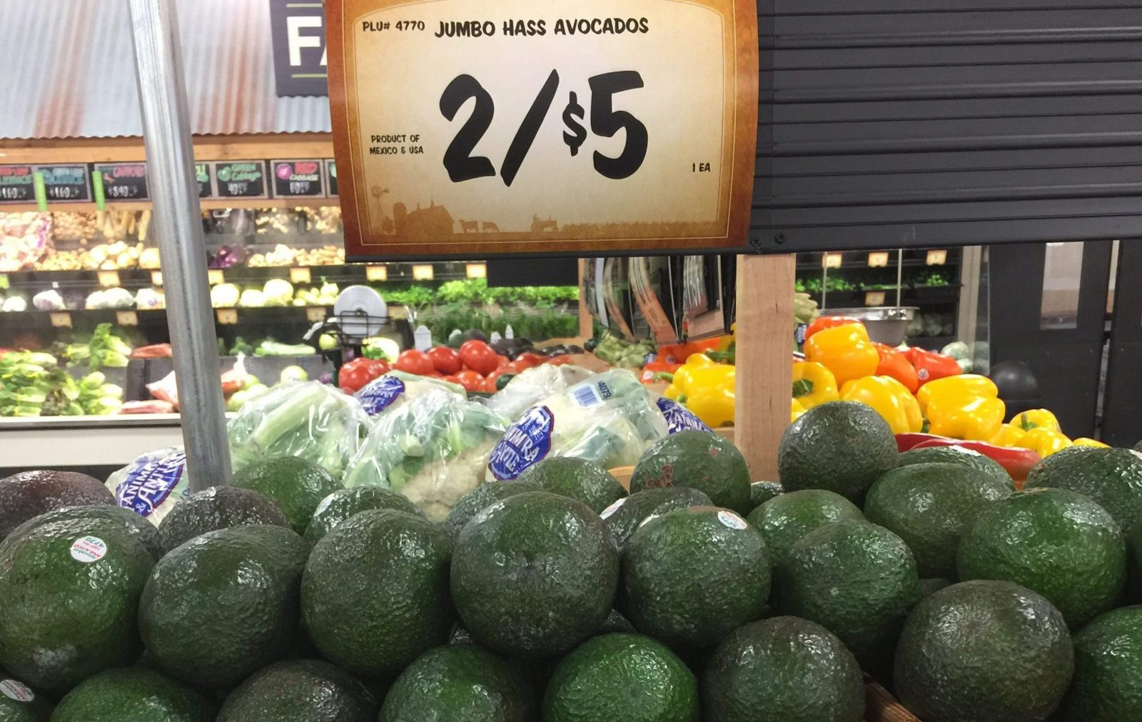 Avocado Cartels: The Violent Reality Behind